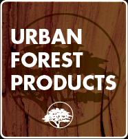 urban-forest
