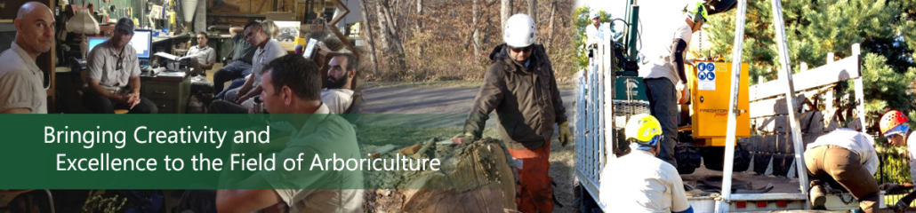 Bringing Creativity and Excellence to The Field of Arboriculture
