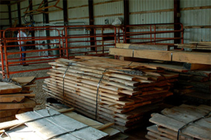 urban forest products inventory